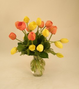 Spring Tulips on sale for January