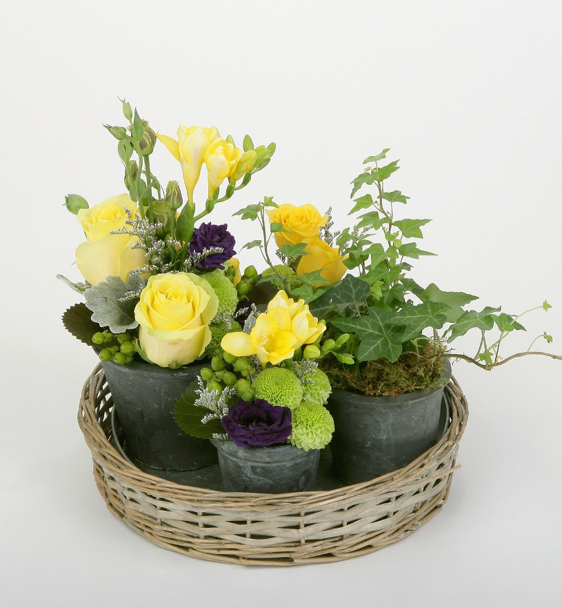 Flowers and plants in little pots on a tray