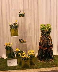 Lots of yellow tulips