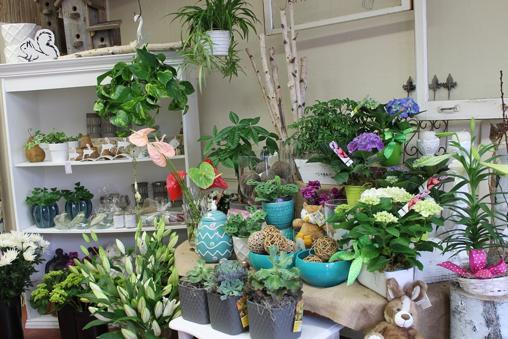 Easter gifts and plants martins the flower people easter display right side of the store negle Choice Image