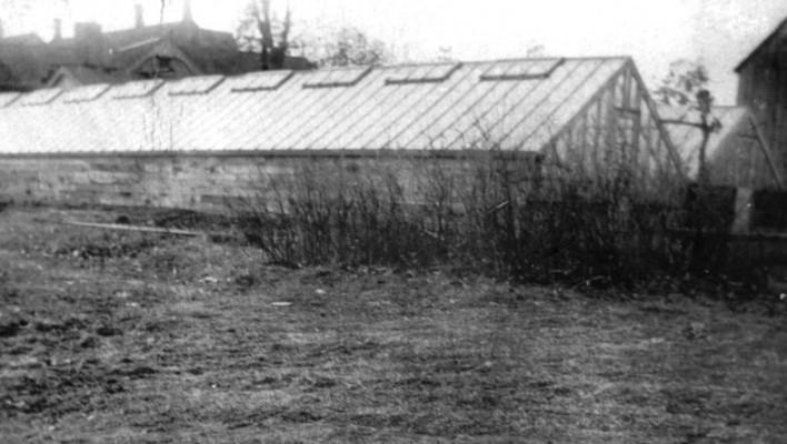 Martin's Greenhouse
