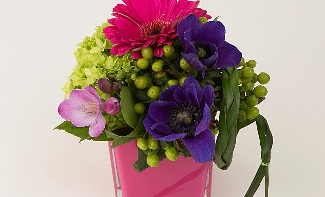 Hot pink, purple and green design