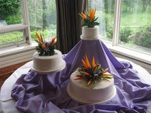 Bright Bird of Paradise Cake Decoration
